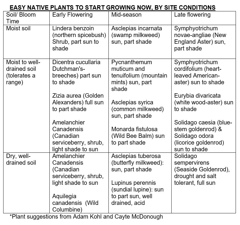 a chart of easy to grow native plants
