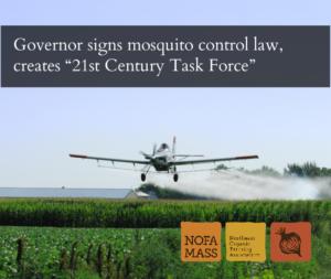 A small plane sprays a mist on a corn field