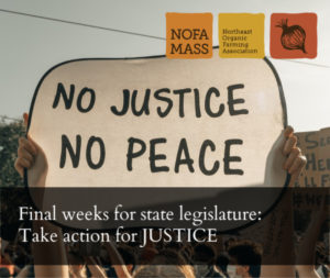 """Hands holding a sign that says """"no justice no peace"""""""